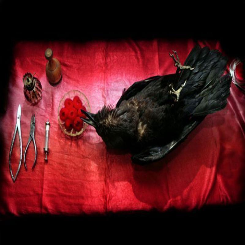 Surgery room | Eran Gilat, Rani Sasson, Keren Yeala-Golan